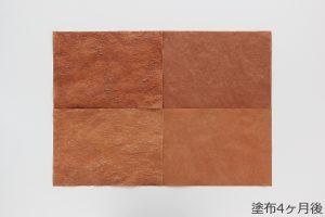 柿渋和紙の色合い変化観察 (塗布4ヶ月後)