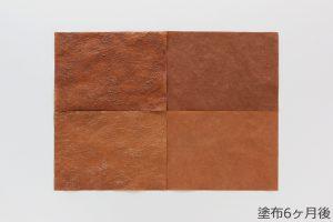 柿渋和紙の色合い変化観察 (塗布6ヶ月後)