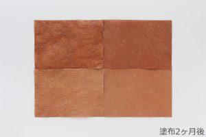 柿渋和紙の色合い変化観察 (塗布2ヶ月後)